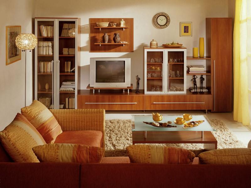 Мебель и другие элементы интерьера гостиной 20 кв.м